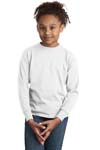; Hanes; Youth Tagless; 100% Cotton Long Sleeve T Shirt. 5546